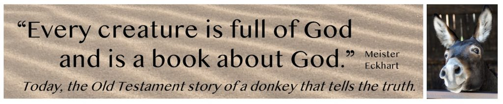 """Every creature is full of God and is a book about God."" -Meister Eckhart. Today, the Old Testament story of a donkey that tells the truth."